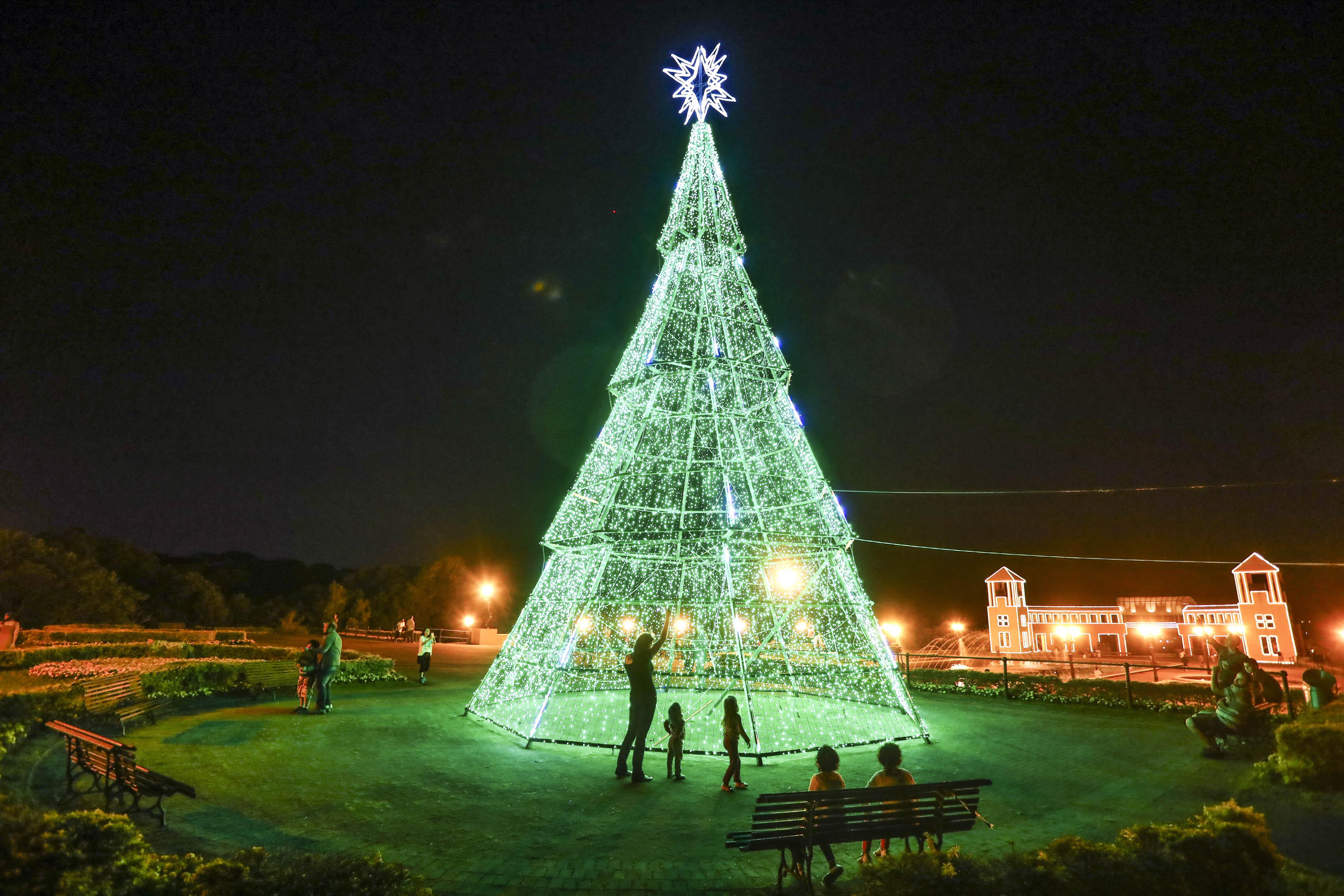 Árvores de Natal: veja onde admirar a decoração de Curitiba - Prefeitura de  Curitiba