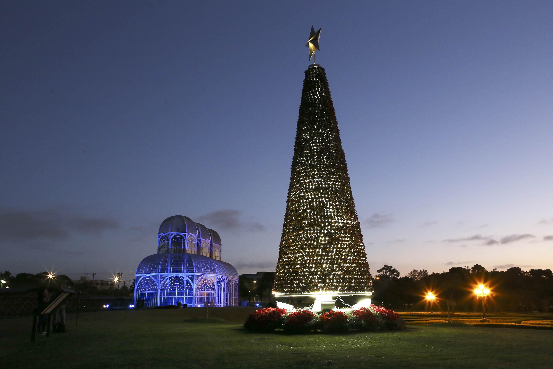 Árvores de Natal iluminam Curitiba: veja onde admirar a decoração da cidade - Prefeitura de Curitiba