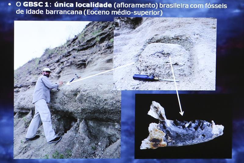Curitiba vai contar com uma reserva de interesse geológico e paleontológico de relevância científica em uma área de 16 hectares, pertencente à Curitiba S.A, situada às margens da BR-277, próxima do Contorno Sul, na CIC. Curitiba, 08/02/2018 Foto:Divulgação/UFPR