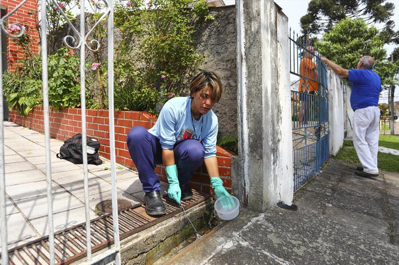 Índice de infestação do Aedes aegypti fica em 0% na cidade. Foto: Daniel Castellano / SMCS