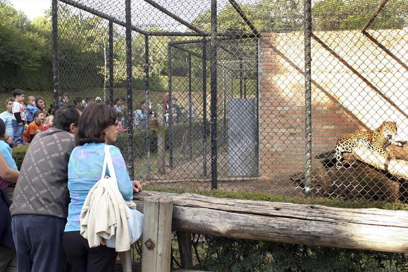 Zoológico tem horário ampliado e atrações para o fim de semana. Foto: Cesar Brustolin/SMCS (arquivo)