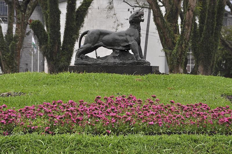 Cidade Florida. Curitiba, 07/12/2018. Foto: Levy Ferreira/SMCS