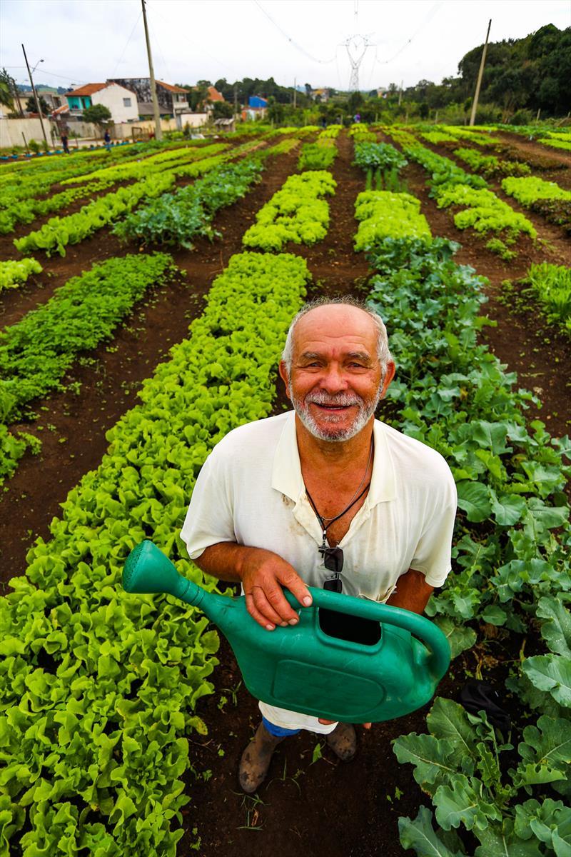 """Agricultores urbanos da horta comunitária Monteiro Lobato no Tatuquara realizam sua primeira colheita de verduras e hortaliças. Na imagem aposentado João Rodrigues de Barros, 77 anos, passou o último mês cuidando de seu canteiro na Monteiro Lobato. """"A gente vem todos os dias, de manhã , para regar"""", recorda.  - Curitiba, 13/05/2019 - Foto: Daniel Castellano / SMCS"""
