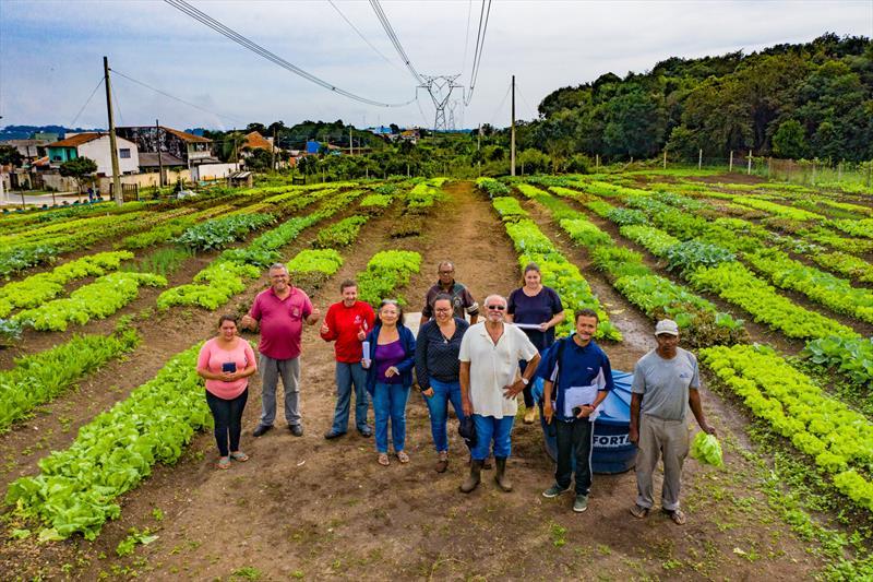 Agricultores urbanos da horta comunitária Monteiro Lobato no Tatuquara realizam sua primeira colheita de verduras e hortaliças. Na imagem produtores da horta comunitária - Curitiba, 13/05/2019 - Foto: Daniel Castellano / SMCS