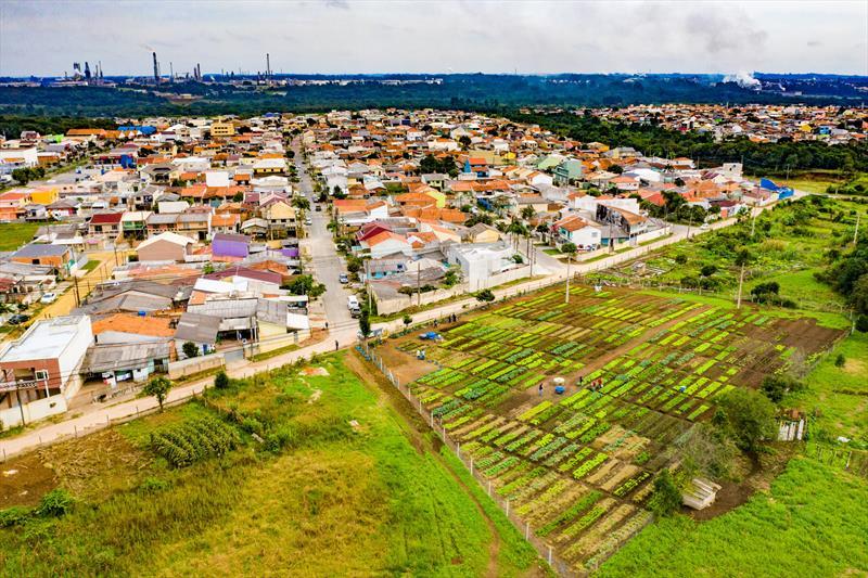 Agricultores urbanos da horta comunitária Monteiro Lobato no Tatuquara realizam sua primeira colheita de verduras e hortaliças  - Curitiba, 13/05/2019 - Foto: Daniel Castellano / SMCS