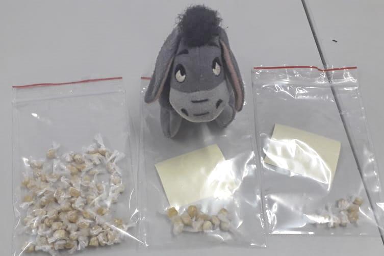 GM flagra chaveiro de pelúcia recheado com drogas. Foto: Divulgação