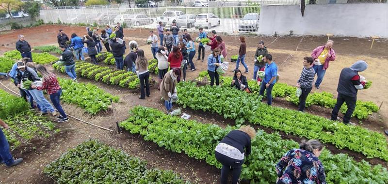 Exposição na XV e plantio em horta marcam a Semana Mundial da Alimentação Foto: Daniel Castellano / SMCS