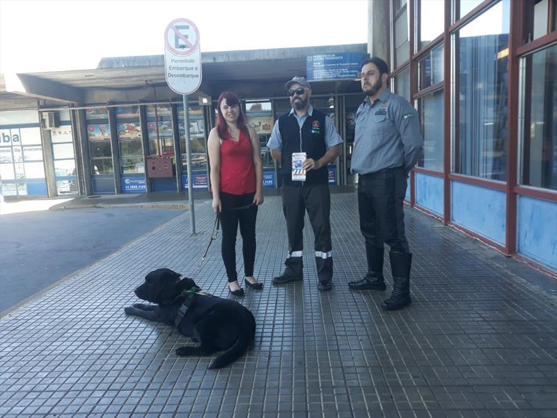 Setran orienta motoristas de aplicativos e táxis sobre transporte do cão-guia.  Foto: Divulgação