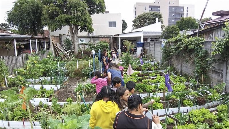 Crianças da EM Vila Torres têm dia de campo em horta urbana. Foto: Divulgação