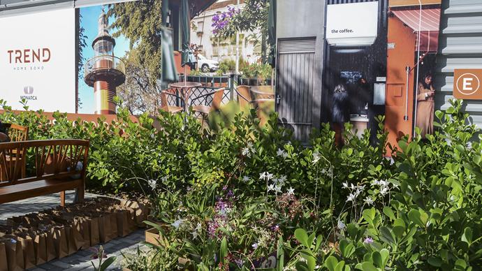 """Prefeito Rafael Greca visita Orquidário Trend Home Soho, projeto """"Se Essa Rua Fosse Minha"""" na Alameda Princesa Izabel no Batel. Curitiba, 15/06/2019. Foto: Levy Ferreira/SMCS"""