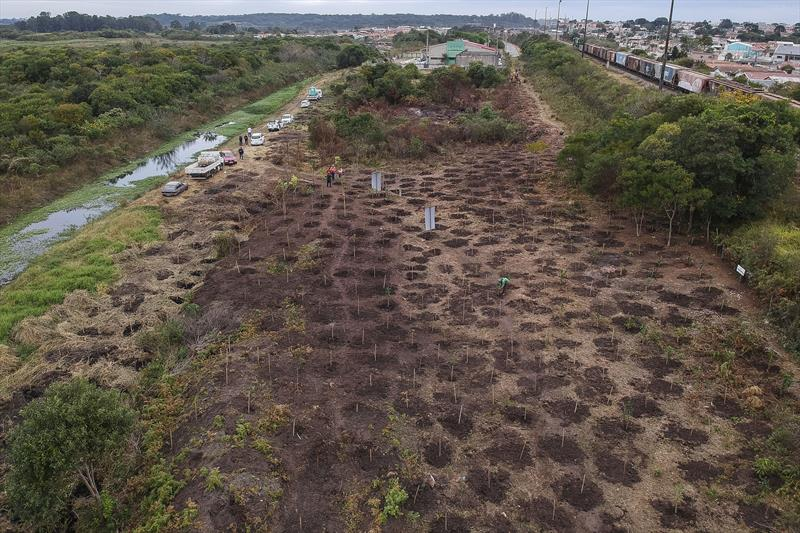 APA atrás do barracão do Ecocidadão da Vila Pantanal, onde estão sendo plantadas mudas de árvores. Curitiba, 22/05/2020. Foto: Pedro Ribas/SMCS