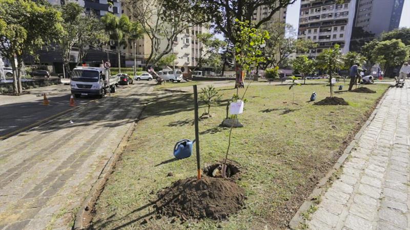 Antes do prazo, Curitiba atinge meta de plantio de 100 mil árvores