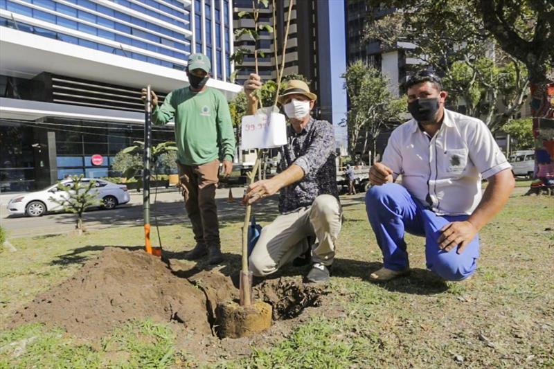 Prefeitura de Curitiba comemora o plantio de 100 mil árvores na cidade, na imagem plantio de mudas de árvores na Praça São Paulo da Cruz em Frente a Igreja Bom Jesus do Cabral - Curitiba, 05/08/2020 - Foto: Daniel Castellano / SMCS