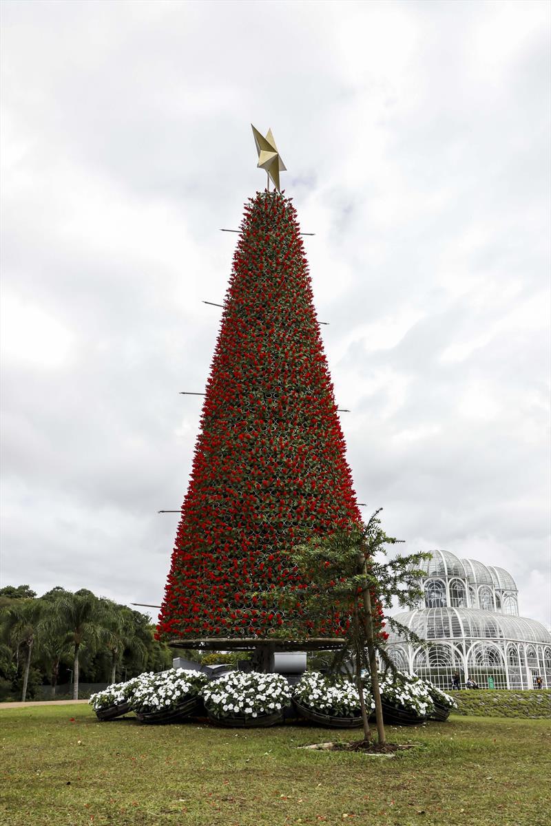 Curitiba entra em clima natalino com início da montagem de árvores e decoração - Jardim Botânico. Curitiba, 19/11/2020. Foto: Hully Paiva/SMCS