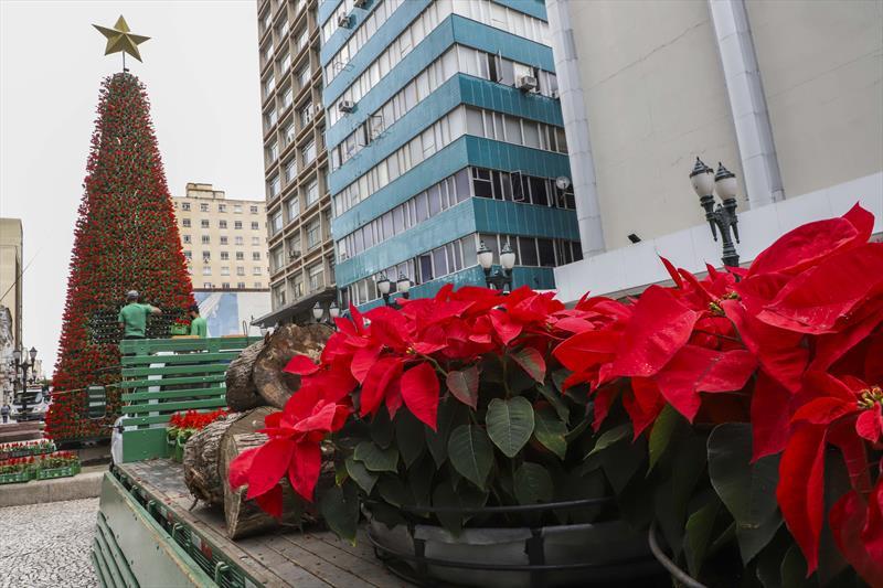 motagem decoracao natalina