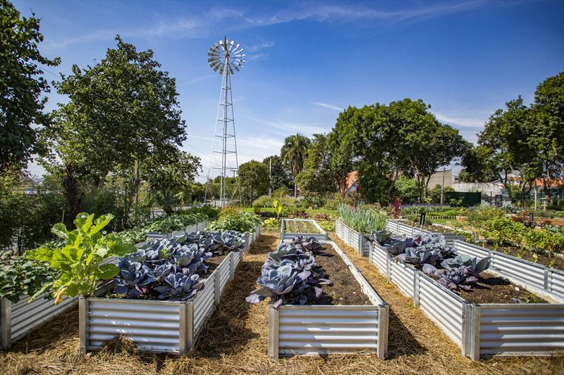 Canteiros de plantas na Fazenda Urbana do Cajuru. - Curitiba, 05/05/2021 - Foto: Daniel Castellano / SMCS