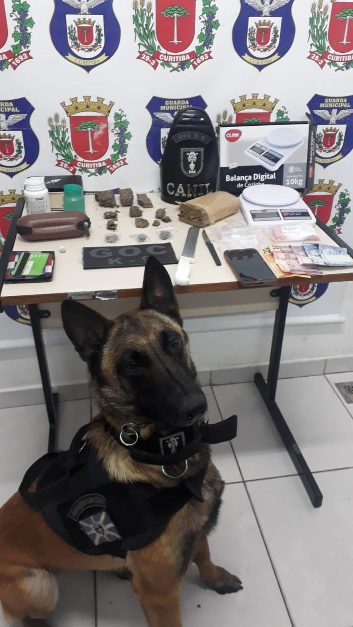 Guardas prendem 41 suspeitos durante o feriado. Foto: Divulgação
