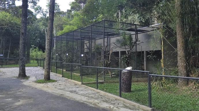Zoo de Curitiba promove visitas com agendamento e sistema drive-thru. Foto: Divulgação
